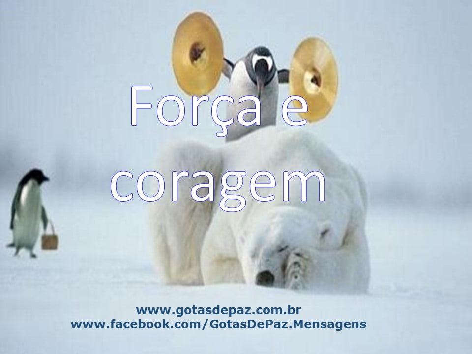 Forcaecoragem