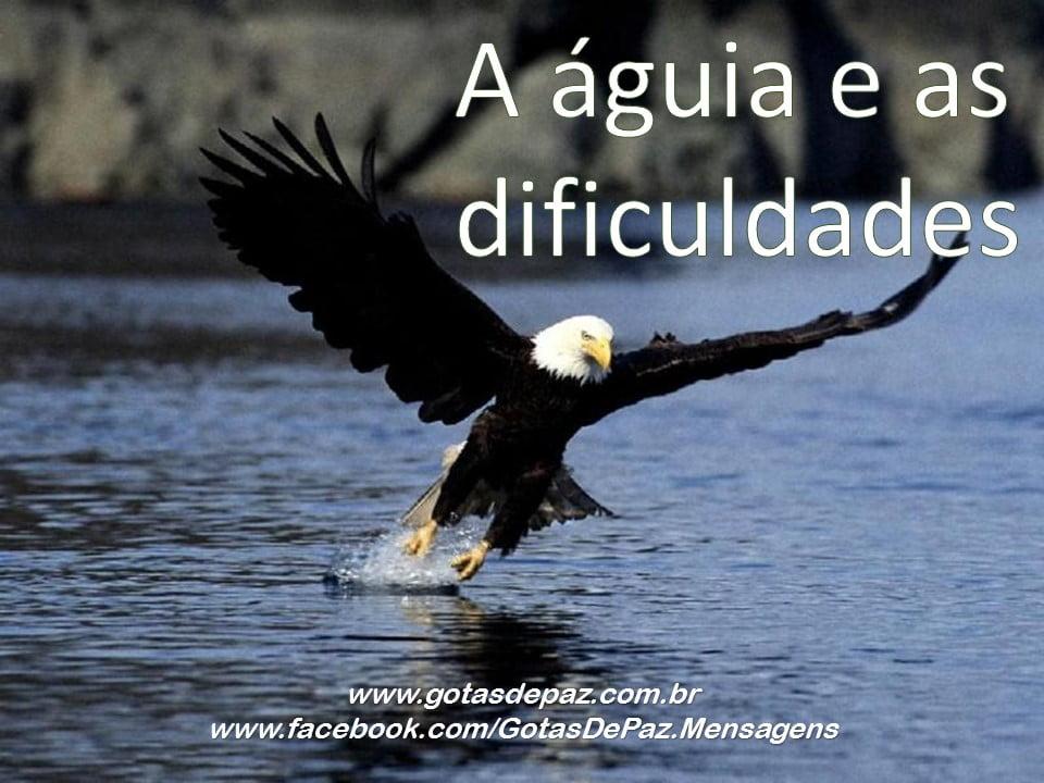 aaguiaeasdificuldades