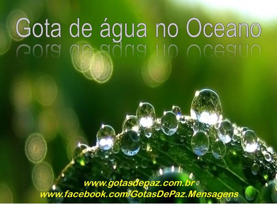 gotadeaguanooceano