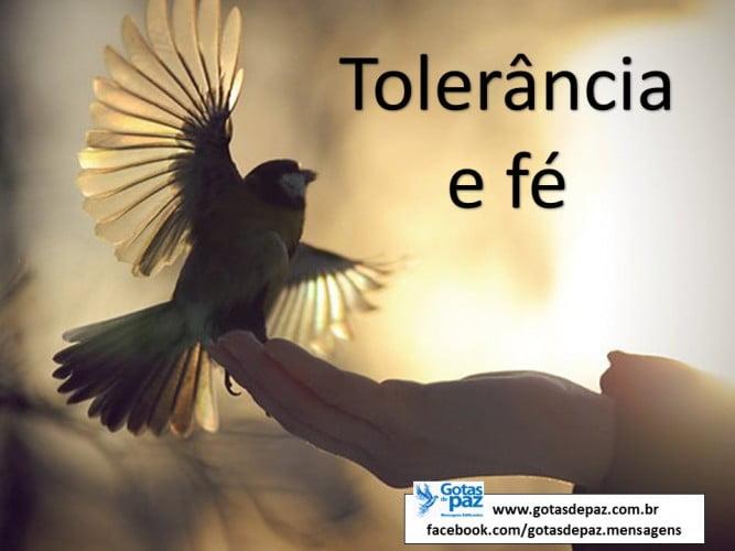 Toleranciaefe